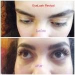 EyeLash Revival